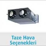 taze-hava